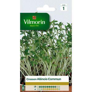 VILMORIN Cresson alenois commun