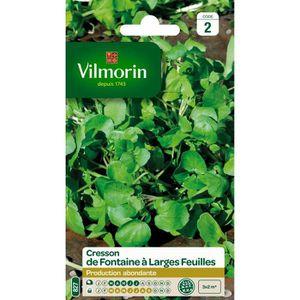 VILMORIN Cresson de Fontaine ? larges feuilles