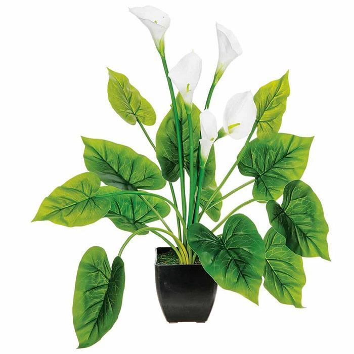 Plante artificielle arum 60 cm tr s r aliste achat for Plante 60 cm
