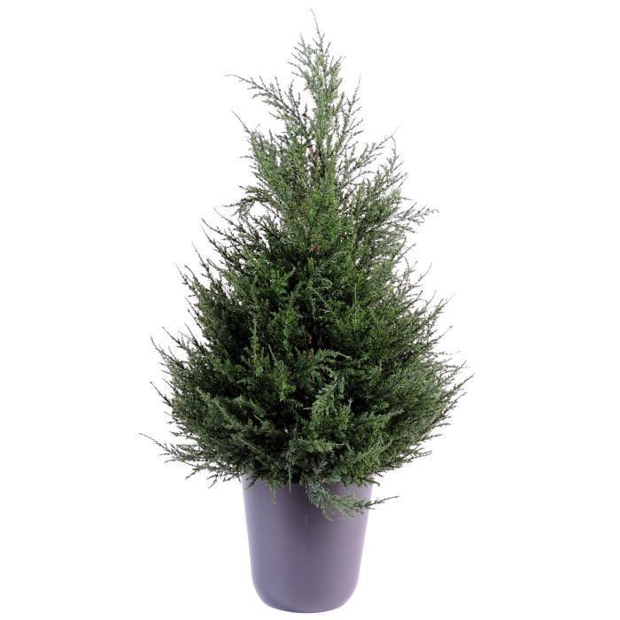 Cypres juniperus vert 65cm plante artificielle achat vente fleur artificielle s ch e pvc for Plante arbuste exterieur
