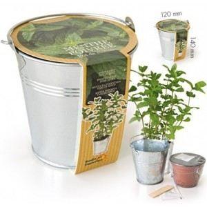 radis et capucine kit culture menthe pot achat vente graine semence radis et. Black Bedroom Furniture Sets. Home Design Ideas