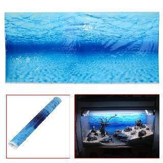 décor d aquarium gratuit