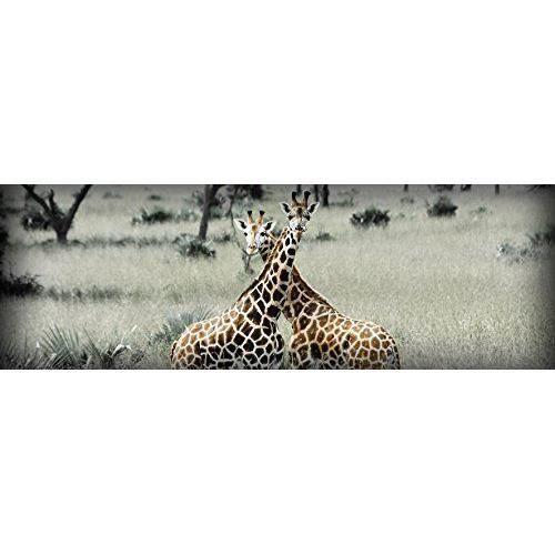 Artis 607954 glassart impression sur verre 2 girafes 30 x 97 cm achat vente sous verre - Glass art by artis ...