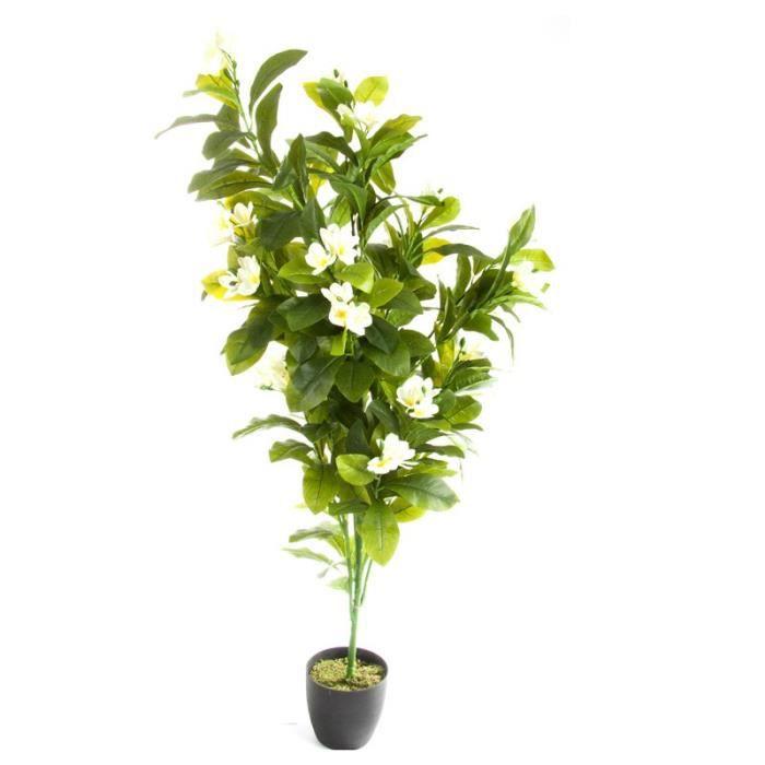 Paris prix plante artificielle frangipanier 165cm for Plante artificielle prix