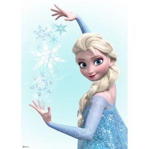 Tableau reine des neiges achat vente tableau reine des neiges pas cher cdiscount - Deco reine des neiges ...