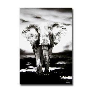 tableau d co elephant 39 s tatoo noir et blanc d achat vente tableau toile cdiscount. Black Bedroom Furniture Sets. Home Design Ideas