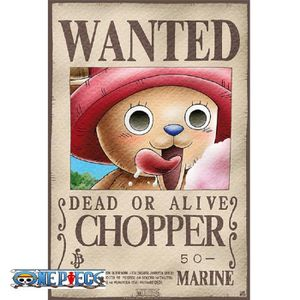 Affiche wanted one piece achat vente affiche wanted one piece pas cher cdiscount - Affiche one piece wanted ...