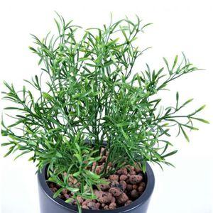 vente plantes vertes