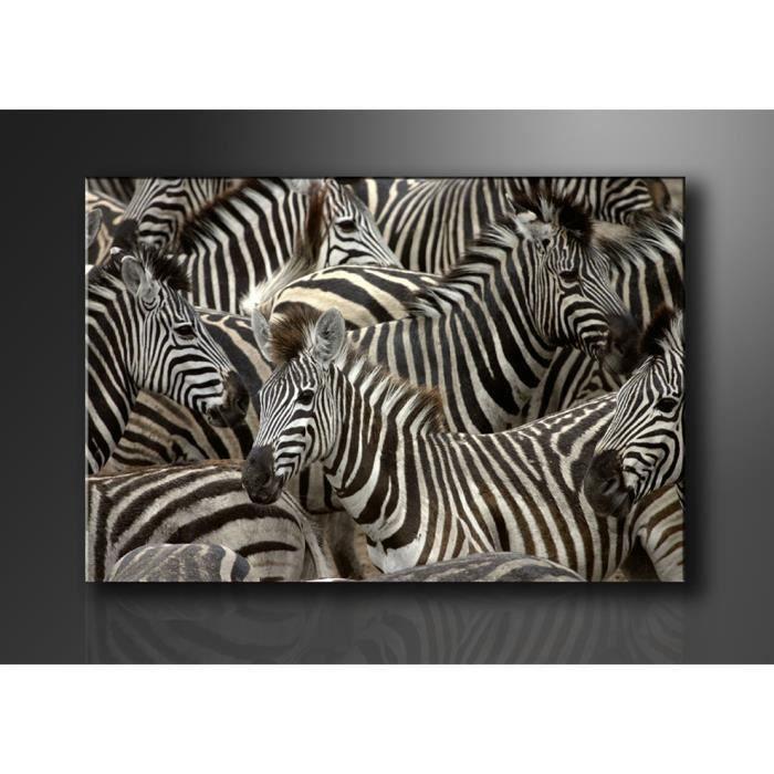 tableau imprim 120x80 cm zebres achat vente tableau toile toile bois cdiscount. Black Bedroom Furniture Sets. Home Design Ideas