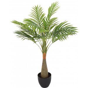 Palmier en pot achat vente palmier en pot pas cher for Palmier artificiel moins cher
