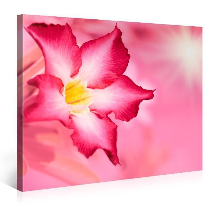 Tableau d co sur toile fleur rose 100x75cm achat vente for Tableau impression sur toile