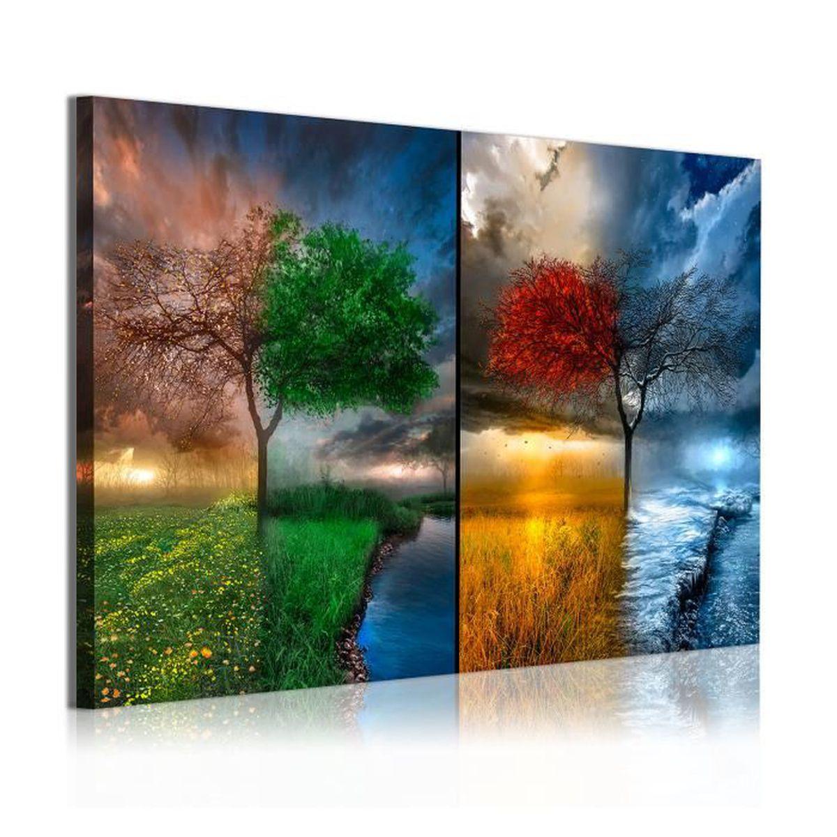 tableaux sur toile 4 saisons achat vente tableaux sur toile 4 saisons pas cher les soldes. Black Bedroom Furniture Sets. Home Design Ideas