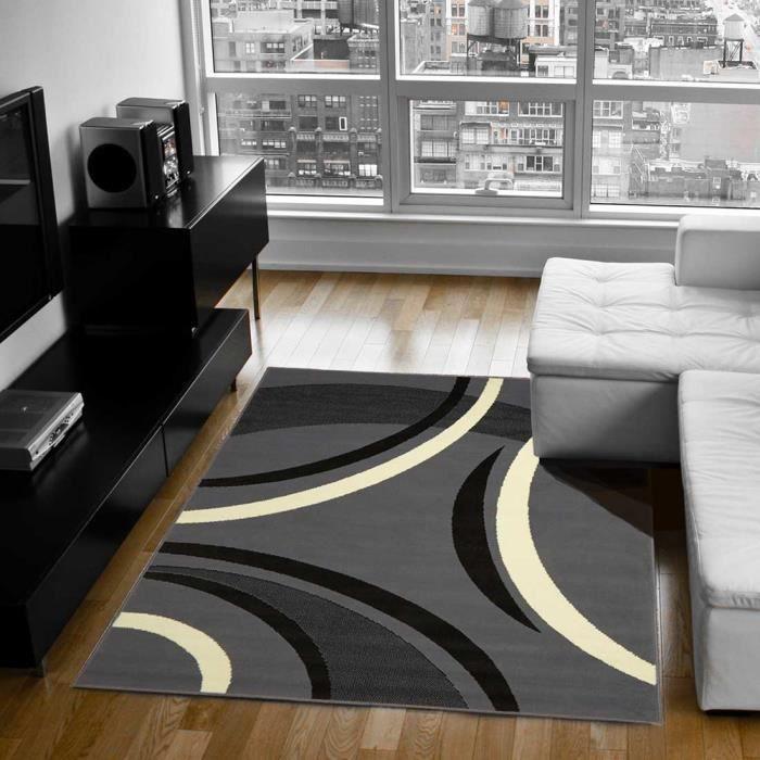 tapis moderne pour salon platino gris 80x140 par achat vente tapis cdiscount. Black Bedroom Furniture Sets. Home Design Ideas