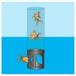 Bassin de jardin pour poisson achat vente bassin de for Achat poisson etang