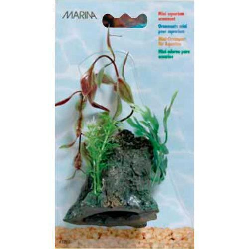 Tronc avec plantes d coratives marina grand achat for Les plantes decoratives