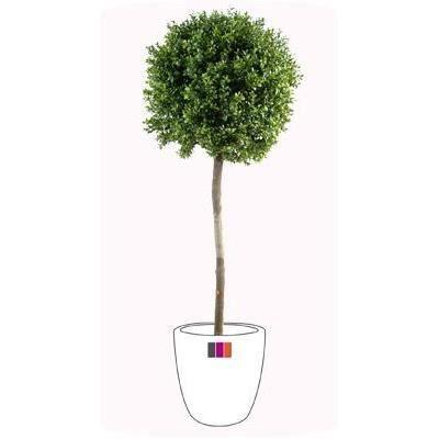 Plante artificielle convient en exterieur buis tige boule for Plantes artificielles exterieur