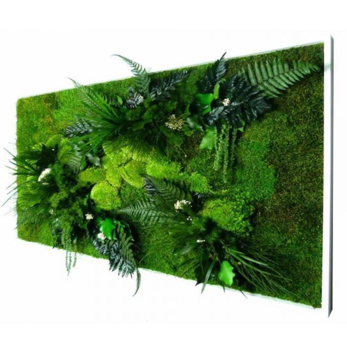 cadre vegetal achat vente cadre vegetal pas cher les soldes sur cdiscount cdiscount. Black Bedroom Furniture Sets. Home Design Ideas