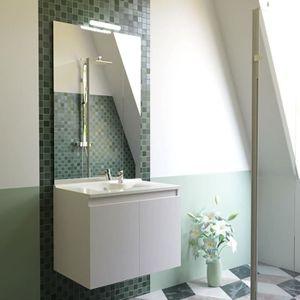 LAVABO - VASQUE Meuble salle de bain simple vasque PROLINE 60 - Bl