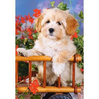 petit chien dans la charrue achat vente puzzle cdiscount. Black Bedroom Furniture Sets. Home Design Ideas