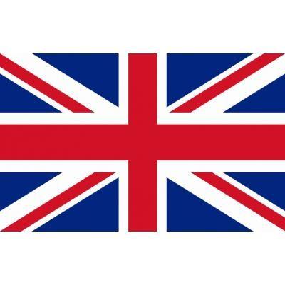 Images correspondant tapis anglais