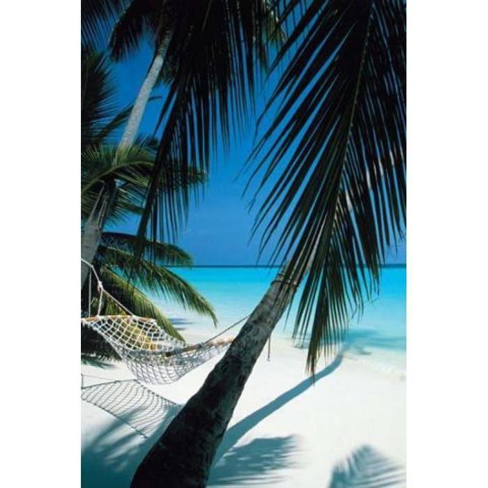 poster palmier achat vente poster palmier pas cher cdiscount. Black Bedroom Furniture Sets. Home Design Ideas