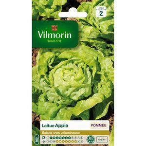 Laitue appia vilmorin achat vente graine semence for Vilmorin graines