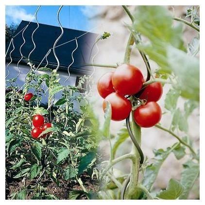 TUTEUR - LIEN - ATTACHE Tuteur tomates à spirale - Lot de 5