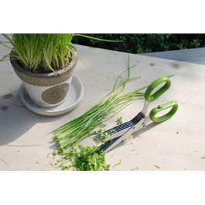 Ciseaux 5 lames pour herbes aromatiques achat vente - Herbe aromatique cuisine ...