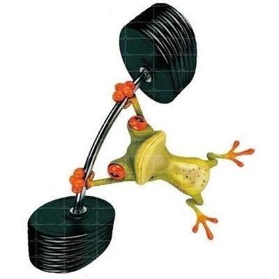3d dr le d calcomanie fen tre voiture peep grenouille des for Fenetre voiture