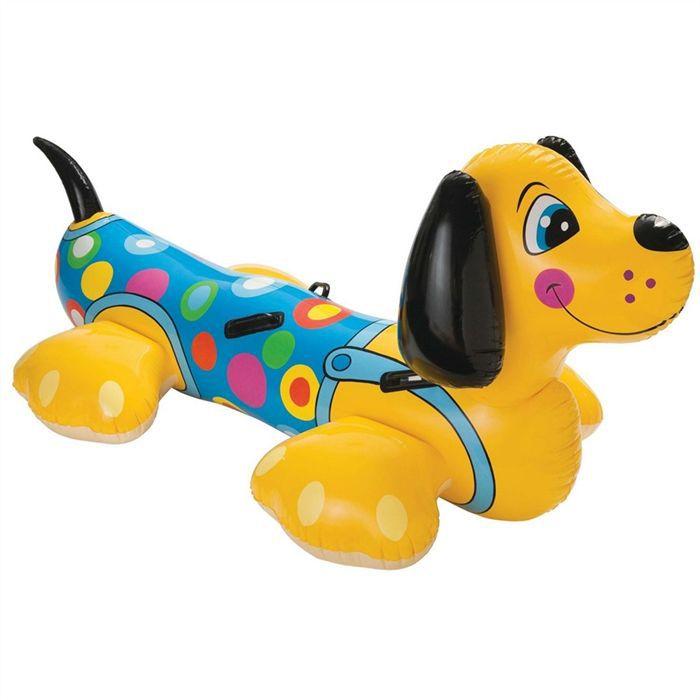 Piscine pour chien les bons plans de micromonde for Piscine de jardin pour chien