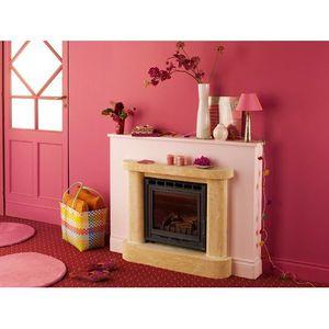 Insert chemin e regain 50 decor achat vente po le insert foyer insert - Insert pour petite cheminee ...