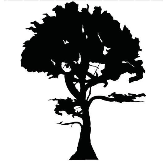 Stickers Arbre Noir : stickers arbre for t noir achat vente stickers les soldes sur cdiscount cdiscount ~ Teatrodelosmanantiales.com Idées de Décoration
