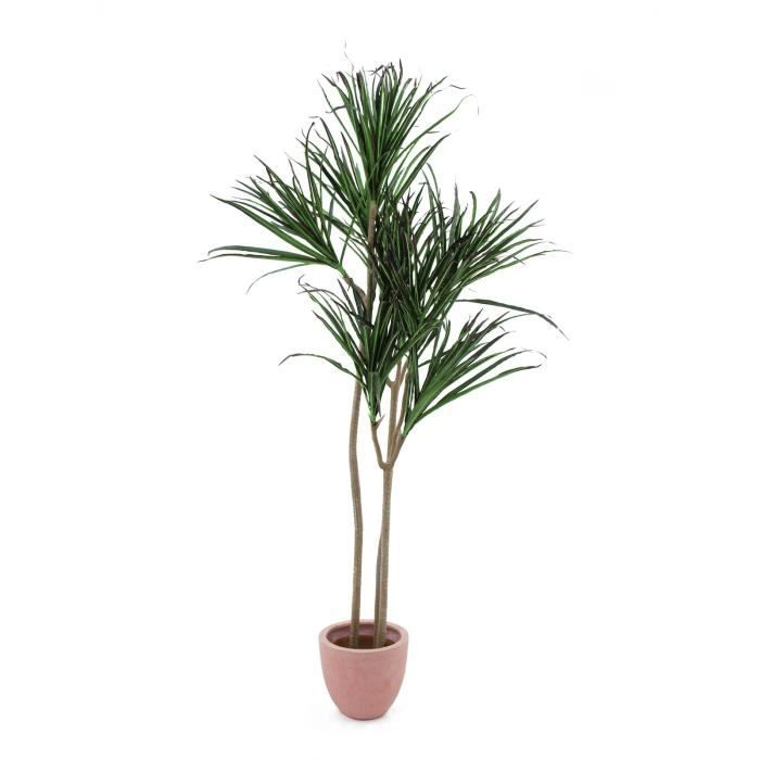 plante dracaena verte 180cm achat vente fleurs stabilis es cdiscount. Black Bedroom Furniture Sets. Home Design Ideas