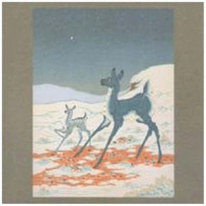 The brave & the bold by Tortoise & Bonnie Prince
