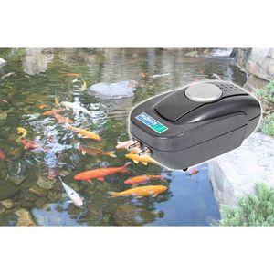 Bassin pour poisson achat vente bassin pour poisson for Poisson bassin exterieur achat