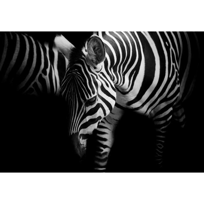 Tableau zebre noir et blanc achat vente tableau zebre noir et blanc pas c - Tableau noir et blanc pas cher ...