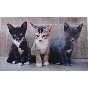 PAILLASSON Tapis paillasson imprimé chats - 75 x 45 cm