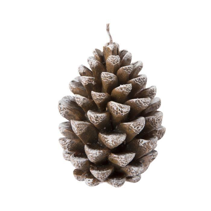 Pom De Pin Sallanches : bougie pomme de pin 12x8cm achat vente bougie ~ Premium-room.com Idées de Décoration