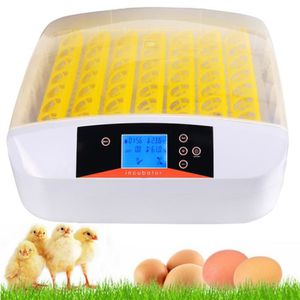 INCUBATEUR - COUVEUSE Nouveau Couveuse incubateur œufs Intelligent autom