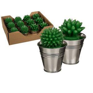 bougie cactus achat vente bougie cactus pas cher les soldes sur cdiscount cdiscount. Black Bedroom Furniture Sets. Home Design Ideas