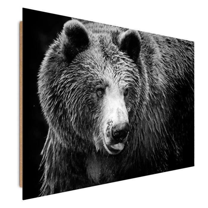 tableau animaux noir et blanc achat vente tableau animaux noir et blanc pas cher cdiscount. Black Bedroom Furniture Sets. Home Design Ideas