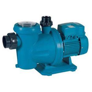 FILTRATION DE L'EAU Pompe filtration piscine Espa Blaumar S2 200-31 mo