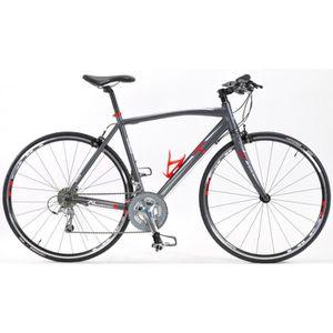 VÉLO DE COURSE - ROUTE Vélo Fitness Asphalt AL1 Couleur - Gris, Taille -