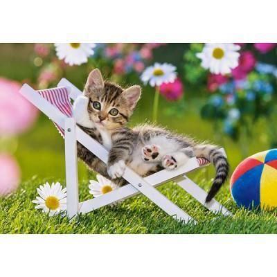 chaton dans son transat achat vente puzzle cdiscount. Black Bedroom Furniture Sets. Home Design Ideas