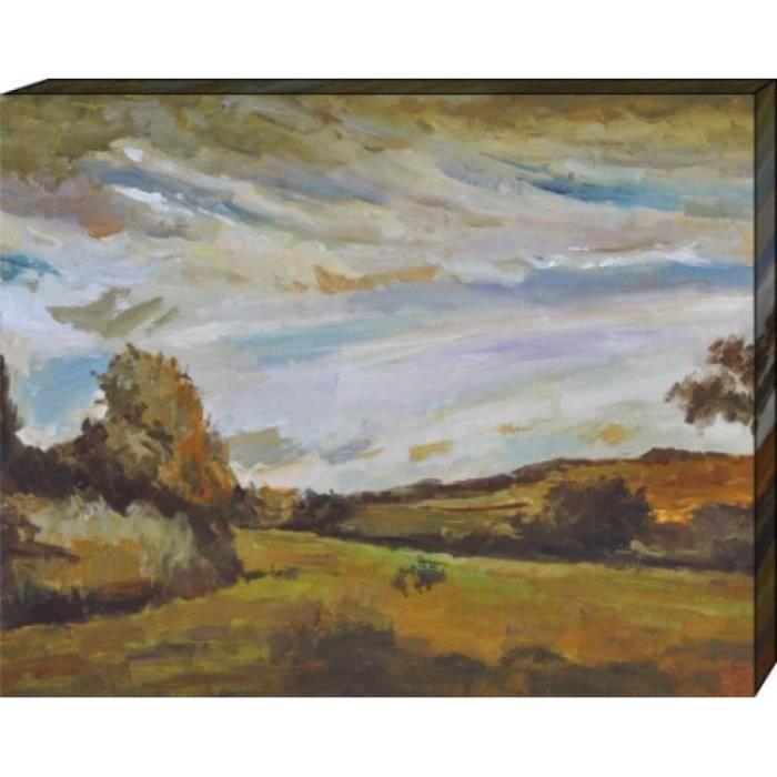 vincent van gogh poster reproduction sur toile tendue sur ch ssis paysage avec des dunes. Black Bedroom Furniture Sets. Home Design Ideas