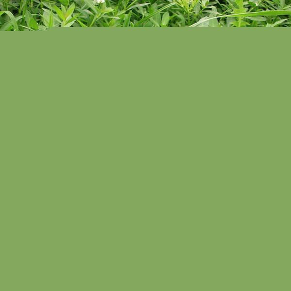 Clairage de jardin solaire spot lumi re paysage chemin - Spot de jardin solaire ...
