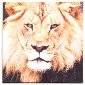 cadre lion achat vente cadre lion pas cher soldes. Black Bedroom Furniture Sets. Home Design Ideas