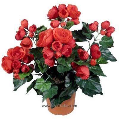 begonia en pot rouge cerise artificiel h 40 cm achat vente fleur artificielle s ch e. Black Bedroom Furniture Sets. Home Design Ideas