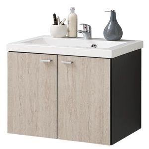 Meuble de salle de bain en resine avec lavabo integre for Plan meuble sous evier