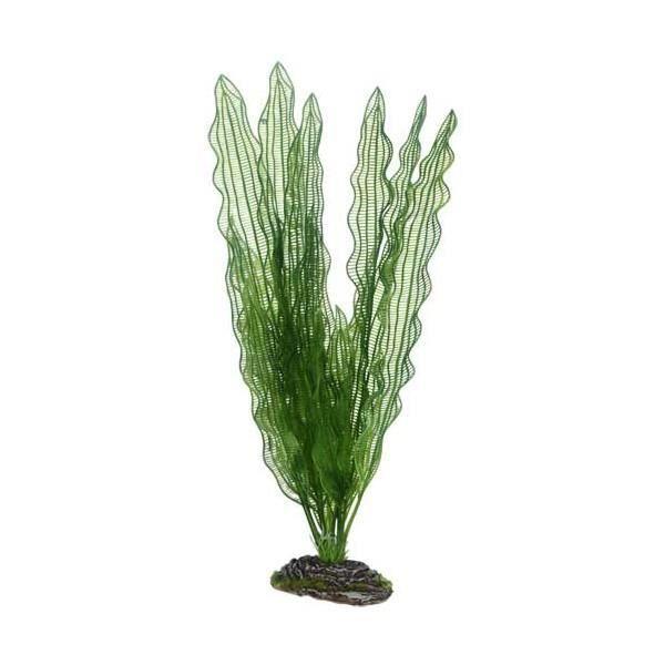 Plante artificielle aponogeton 39cm achat vente d co for Deco plante artificielle